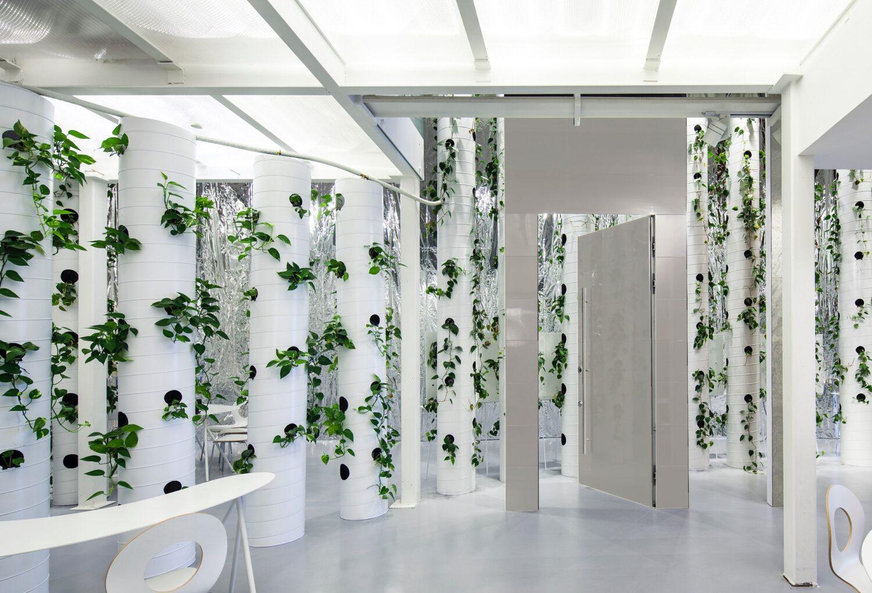 Hamama' showroom